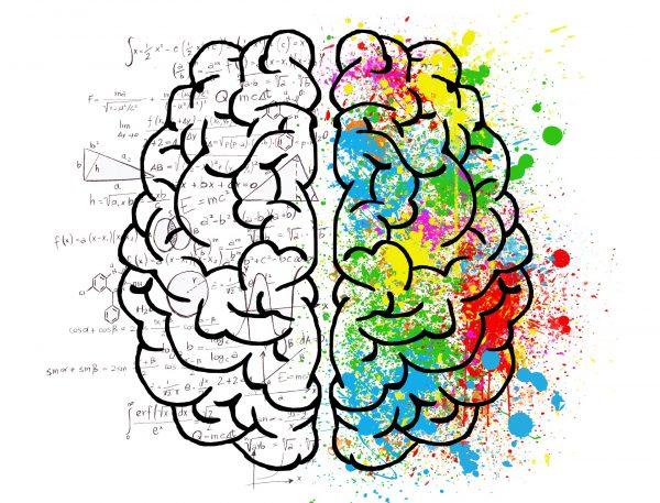 descubre cuáles son las neurociencias